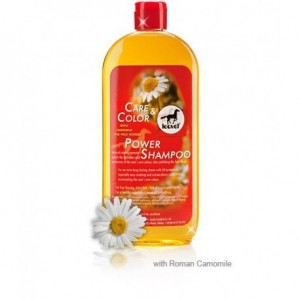 POWER SHAMPOO CAMONILLA CARE & COLOR