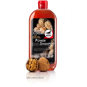 POWER SHAMPOO WALNUT CARE & COLOR